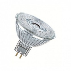 SPOT LED MR16 GU5.3